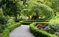 اصول طراحی فضای سبز
