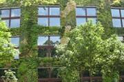 ساختمان سبز
