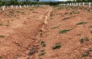 تراکم خاک به وسیله انفجار